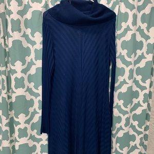 Dana Buchman Nagy blue sweater dress